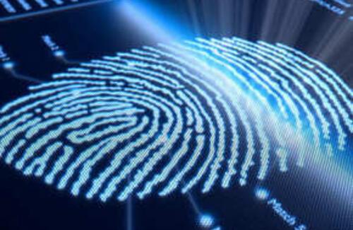 Отпечатки пальцев казахстанских водителей внесут в права